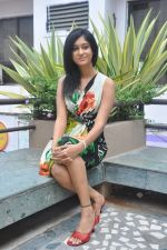 Sarika Affan Casual Shoot during Cricket Girls and Beer Press Meet on 26th September 2011 (95).jpg