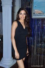 at the post party of Aamby Valley bridal Week day 5 on 27th Sept 2011 (146).JPG