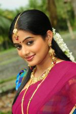 Priyamani in Half Saree Shoot (6).jpg