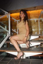 Shilpi Sharma at Be Careful music launch in Sheesha Lounge on 28th Sept 2011 (84).JPG