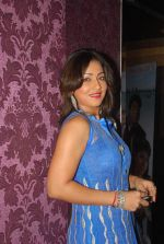 at Be Careful music launch in Sheesha Lounge on 28th Sept 2011 (45).JPG