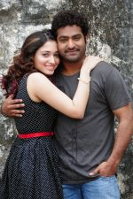 Tamanna, Junior NTR in Oosaravelli Movie Stills (20).JPG