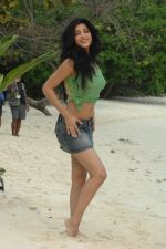 Shruti Haasan in 7aum Arivu 7th Sense Movie Stills (2).JPG