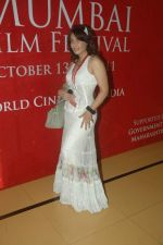 at 13th Mami flm festival in Cinemax, Mumbai on 19th Oct 2011 (16).JPG