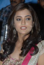 Nisha Agarwal attends Solo Movie Audio Release on 21st October 2011 (89).JPG