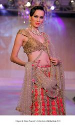 Model walk the ramp for Falguni and Shane Peacock Show at Bridal Asia 2011 on 27th Sept 2011 (4).jpg