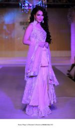 Model walk the ramp for Honey Waqar Show at Bridal Asia 2011 on 27th Sept 2011 (2).jpg