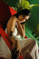 Vimala Raman Stills from Movies (20).JPG