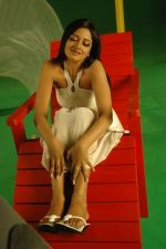 Vimala Raman Stills from Movies (24).JPG