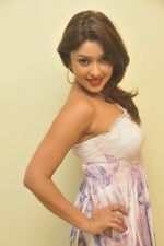 Payal Ghosh_s Casual Shoot on 7th October 2011 (13).jpg