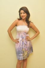 Payal Ghosh_s Casual Shoot on 7th October 2011 (1).jpg