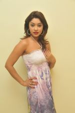 Payal Ghosh_s Casual Shoot on 7th October 2011 (25).jpg