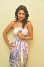 Payal Ghosh_s Casual Shoot on 7th October 2011 (29).jpg