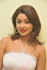 Payal Ghosh_s Casual Shoot on 7th October 2011 (3).jpg