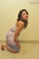 Payal Ghosh_s Casual Shoot on 7th October 2011 (40).jpg