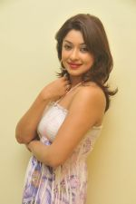 Payal Ghosh_s Casual Shoot on 7th October 2011 (7).jpg
