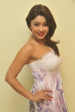 Payal Ghosh_s Casual Shoot on 7th October 2011 (8).jpg