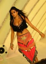 Priyamani in a song shoot (22).jpg