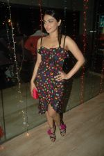 Neeru Singh at Miley Naa Miley Hum premiere in Cinemax on 3rd Nov 2011 (19).JPG