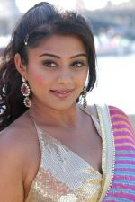 Priyamani in Kshetram Movie Stills (15).JPG