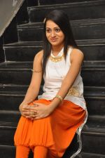 Reshma_s casual shoot during Ee Rojullo Movie Logo Launch on 5th November 2011 (26).JPG