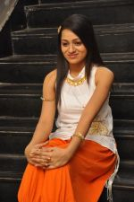 Reshma_s casual shoot during Ee Rojullo Movie Logo Launch on 5th November 2011 (27).JPG