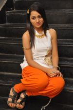 Reshma_s casual shoot during Ee Rojullo Movie Logo Launch on 5th November 2011 (34).JPG
