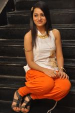 Reshma_s casual shoot during Ee Rojullo Movie Logo Launch on 5th November 2011 (35).JPG