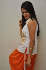 Reshma_s casual shoot during Ee Rojullo Movie Logo Launch on 5th November 2011 (5).JPG