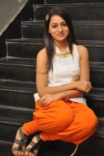 Reshma_s casual shoot during Ee Rojullo Movie Logo Launch on 5th November 2011 (29).JPG