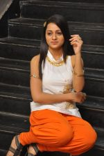 Reshma_s casual shoot during Ee Rojullo Movie Logo Launch on 5th November 2011 (36).JPG