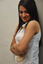 Reshma_s casual shoot during Ee Rojullo Movie Logo Launch on 5th November 2011 (46).JPG