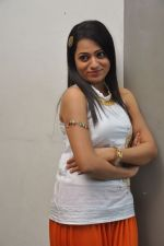 Reshma_s casual shoot during Ee Rojullo Movie Logo Launch on 5th November 2011 (50).JPG