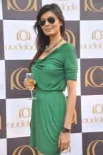 at RWITC inaugural Race Day in Mumbai on 13th Nov 2011 (325).JPG