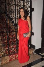 Rashmi Uday Singh at the Indo French dinner in Taj Hotel on 14th Nov 2011 (47).JPG