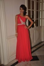 Surpreet Bedi at the Indo French dinner in Taj Hotel on 14th Nov 2011 (31).JPG