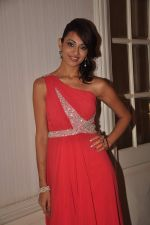 Surpreet Bedi at the Indo French dinner in Taj Hotel on 14th Nov 2011 (33).JPG