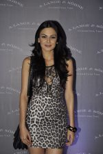 Aanchal Kumar at A. Lange and Sohne party in Aurus, juhu, Mumbai on 17th Nov 2011 (63).JPG