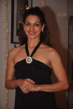 Lavinia Hansraj at Lavina Hansraj furnishing launch in Mumbai on 18th Dec 2011 (82).JPG