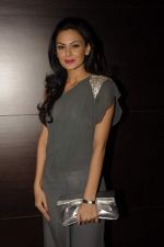 Aanchal Kumar at Baroke lounge launch in South Mumbai on 24th Dec 2011 (32).JPG