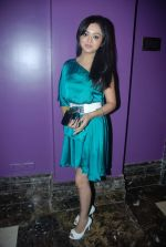 at Saath Nibhana Sathiya Star Plus serial bash in J W Marriott on 24th Dec 2011 (59).JPG