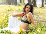 Lakshmi Rai 1_kerelastrikers at CCL Calendar shoot on 21st Dec 2011.jpg
