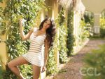 Lakshmi Rai at CCL Calendar shoot on 21st Dec 2011.jpg