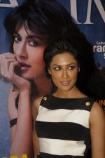 Chitrangada Singh at Maxim bash in Zinc on 27th Dec 2011 (18).JPG