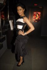 Chitrangada Singh at Maxim bash in Zinc on 27th Dec 2011 (8).JPG