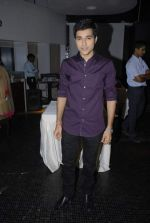 at Serial Tum Dena Saath Mera bash in Andheri East on 27th Dec 2011 (16).JPG