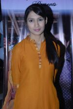 at Serial Tum Dena Saath Mera bash in Andheri East on 27th Dec 2011 (48).JPG