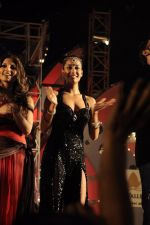 Lisa Haydon at Aamby Valley New Years Party on 31st Dec 2011 (56).JPG