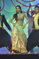 Mallika Sherawat at Tulip Star for New Year_s Eve on 31st Dec 2011 (64).JPG