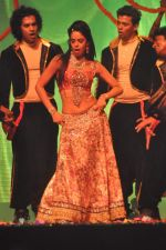Mallika Sherawat at Tulip Star for New Year_s Eve on 31st Dec 2011 (65).JPG